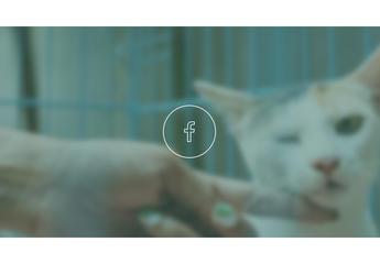 CsudaVet Állatorvosi Rendelő